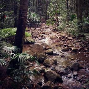 Cascades Walk, Macquarie Pass National Park, Wollongong NSW Australia