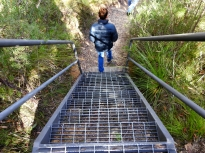 Easy stairs on the way in