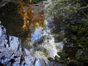 Reflections in the waterfall pool