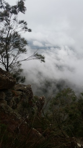 A cloudy day proves to be a spectacular walk to Mt Kembla