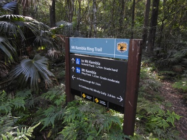 Mt Kembla Ring Trail Bushwalk the 'Gong