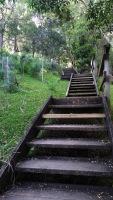 Stairs, Ken Ausburn trail, Wollongong