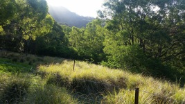 Ken Ausburn Trail