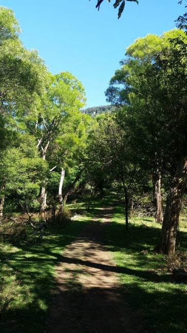 Ken Ausburn Trail, Wollongong