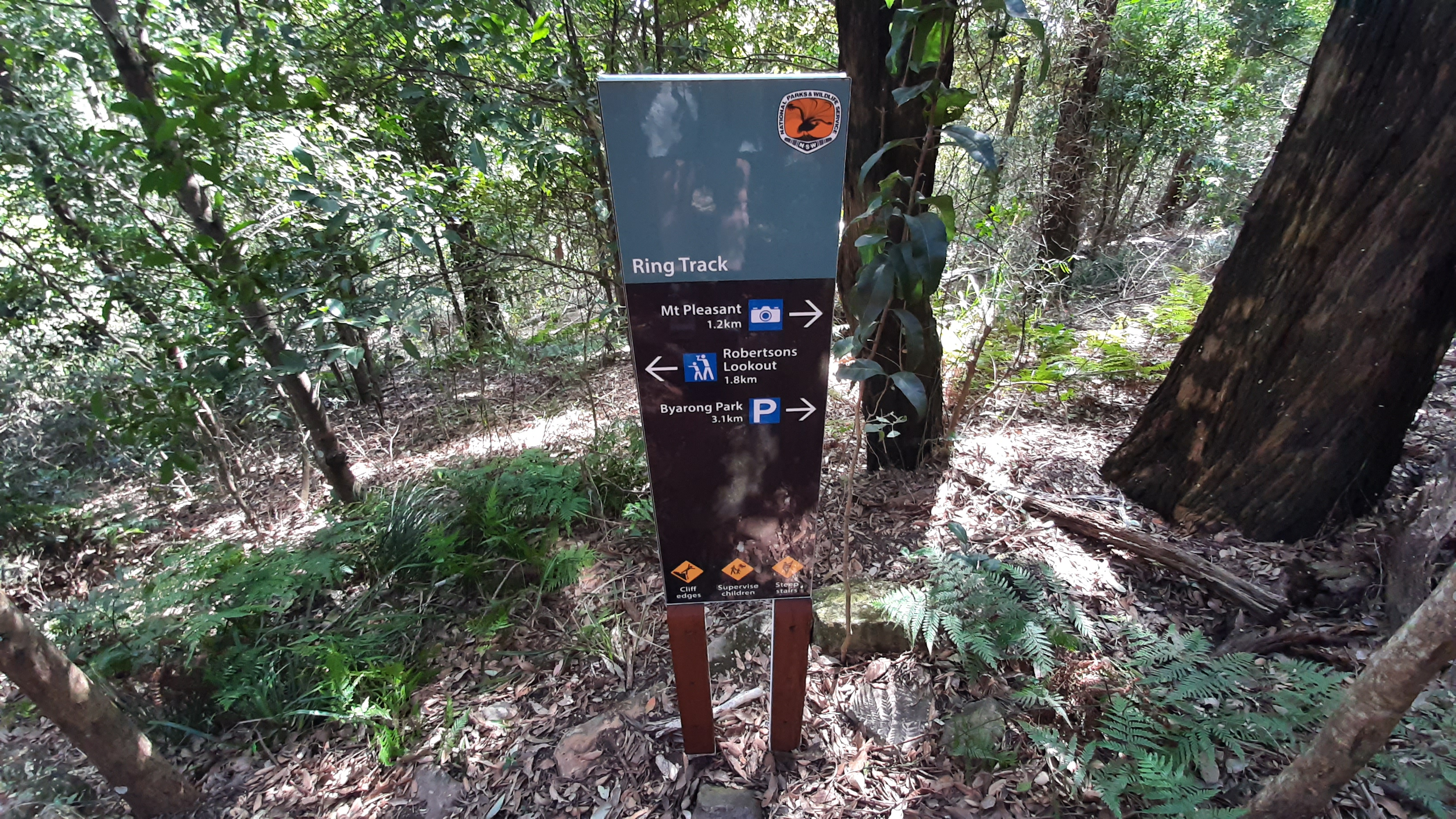 Mt Keira Ring Trail, Wollongong